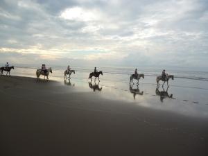 Peaceful beach riding on the beach.